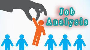 Human Resources Management;Job Analysis
